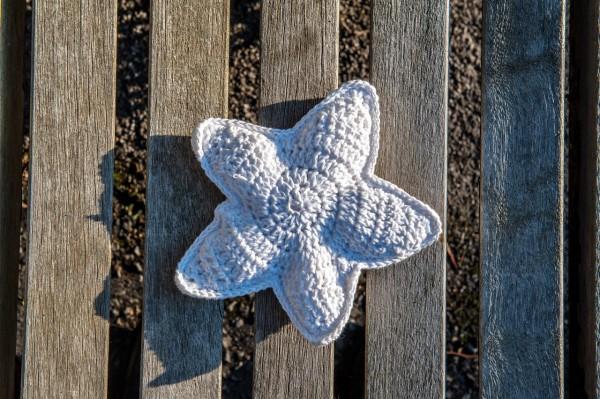 Kissen STARFISH-SEESTERN kuschelweiche Baumwolle weiß